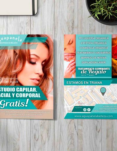 Aguapanela folleto publicitario