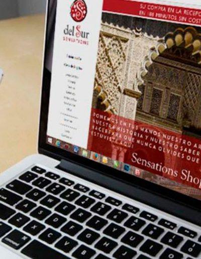 Del Sur Sensations Diseño web