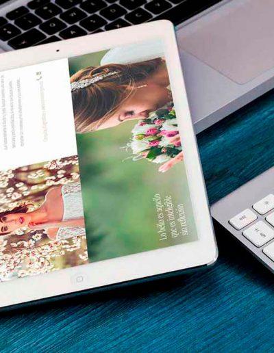 Sitio web de Aguapanela Belleza