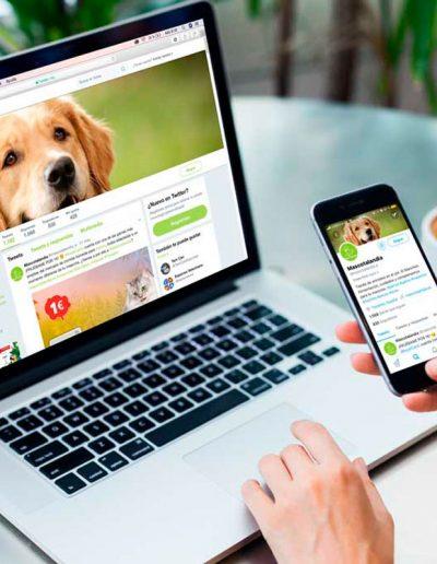 Gestión de Redes Sociales Mascotalandia