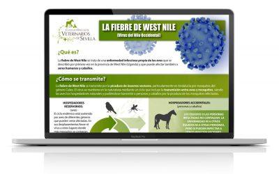 Infografía: la fiebre de West Nile o fiebre del Nilo Occidental